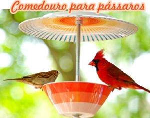 Comedouro1